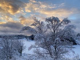 Vinter i Telavåg