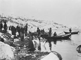 Hvalfangst ved Bildøy 1904