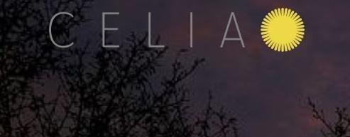 Celia Consult