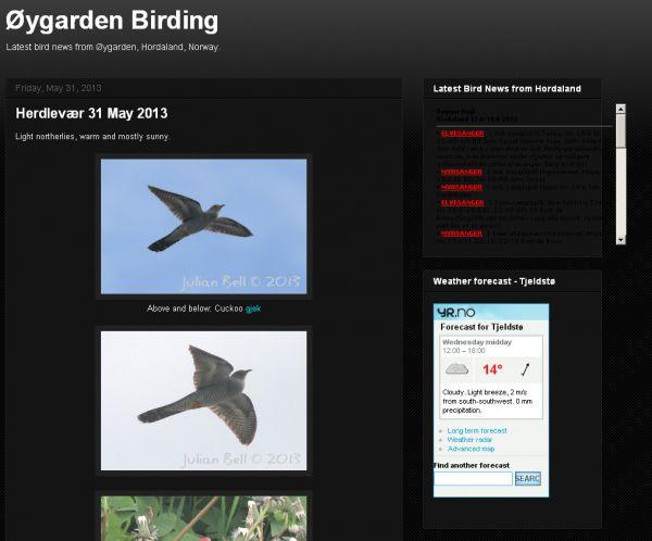 Øygarden Birding