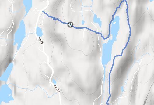 Bjørkedalen-Gjerdet / alternativt Tellnesskogen