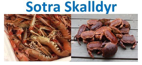 Sotra Skalldyr