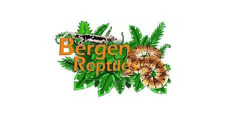 Bergen Reptiles